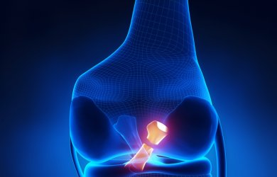 ACL – The importance of Prehab and Rehab